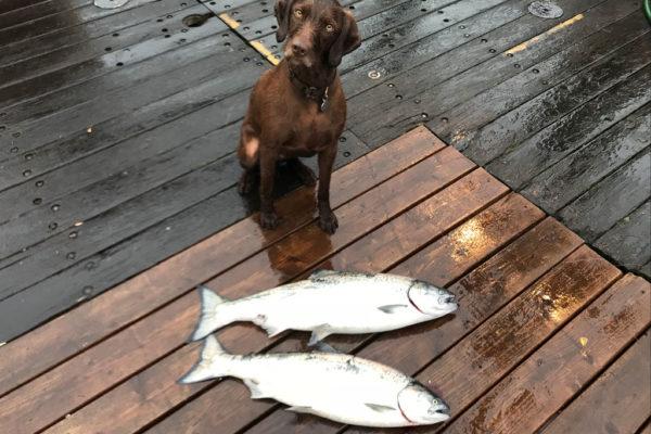 Fishing-03